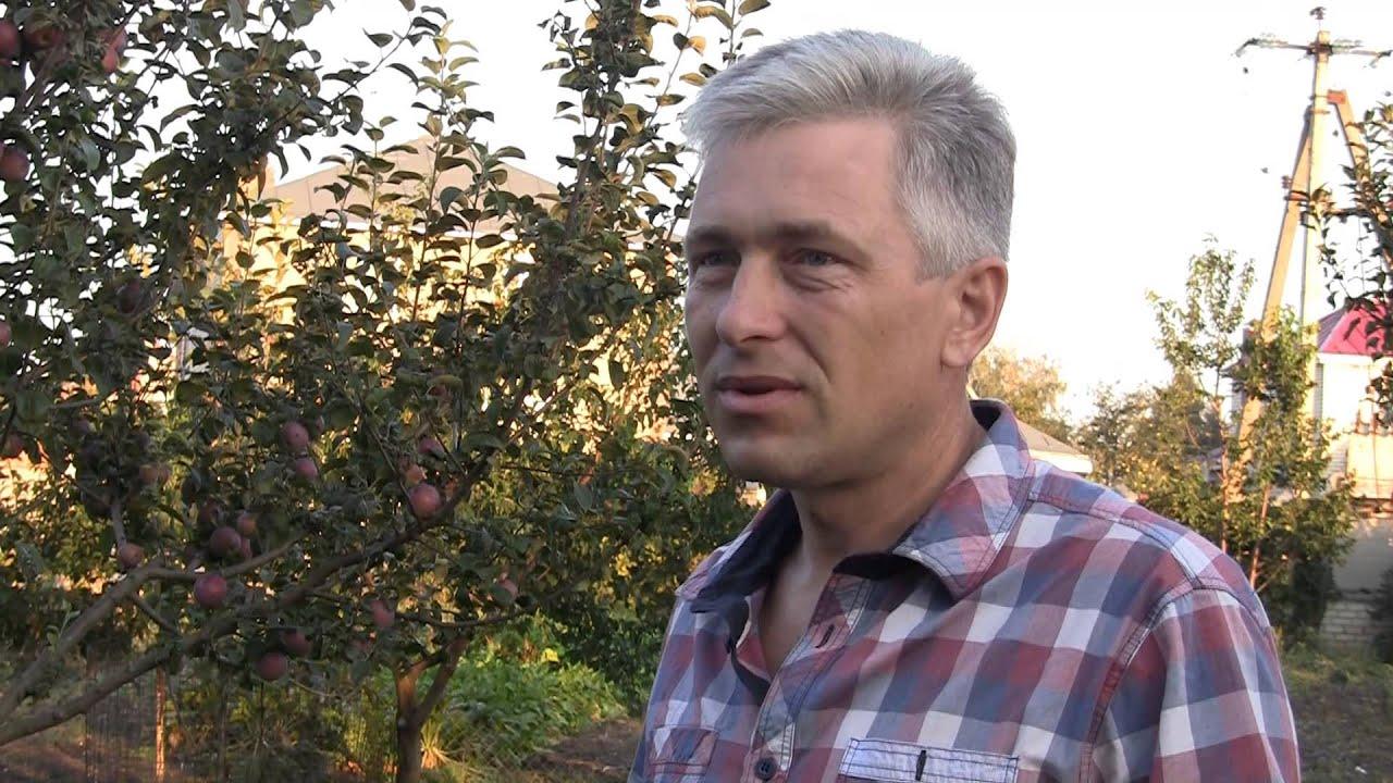 Тулузская порода гусей в хозяйстве Игоря Лунина. Экспедиция по гусеводческим хозяйствам №2.