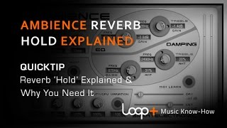 Ambience Free Reverb 'Hold' Function Explained - Loop+ Quick Tip