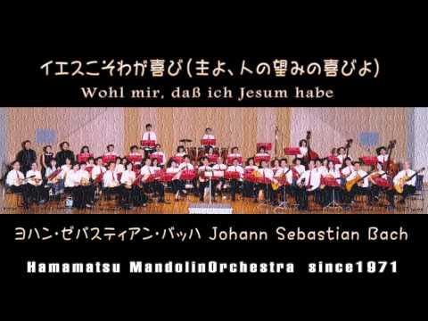 『心と口と行いと生活で』BWV147より 主よ、人の望みの喜びよ : バッハ Johann Sebastian Bach