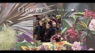 Sonar Pocket / NEW ALBUM「flower」初回限定盤Bに付属のDVDより、ダイジェスト映像を公開!