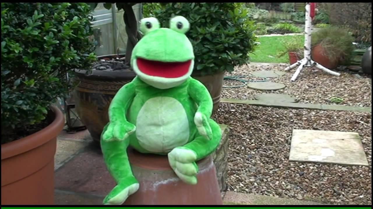 Frog Hip Hop