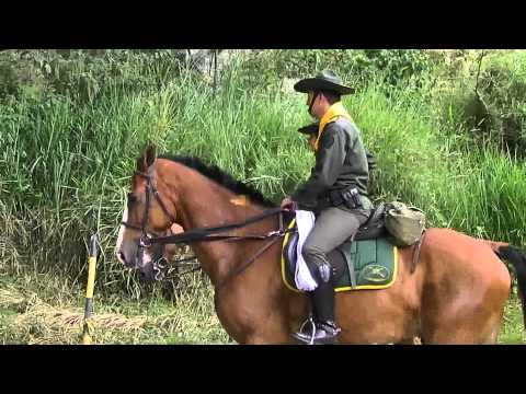 horse-riding-cordoba.-tourism-quindio-colombia,beautiful-landscapes-and-women-32.m2ts