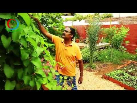 Live green | Eco Friendly Home | Sridhar Reddy