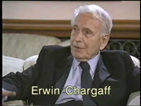 erwin chargaff Erwin chargaff, who has died aged 96, was one of the giants of the world of  biochemistry he did pioneering work in several fields hence, his.