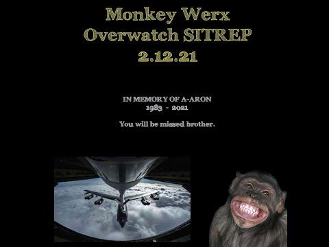 Monkey Werx Overwatch 2 12 21