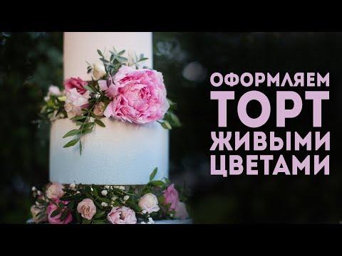 Велюровый торт с живыми цветами. Как украсить торт цветами? Все тонкости работы в одном видео