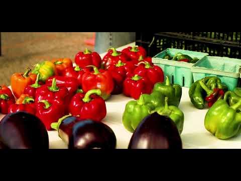 Farmers Market Lincoln Square - Jacksonville, Illinois