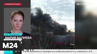 Пожар на складе с древесиной в Подмосковье локализован - Москва 24