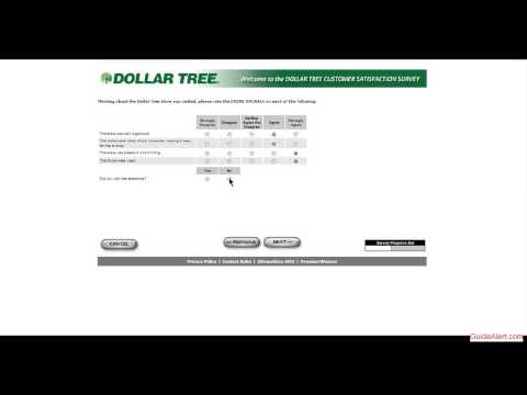 Guide to Dollar Tree Survey