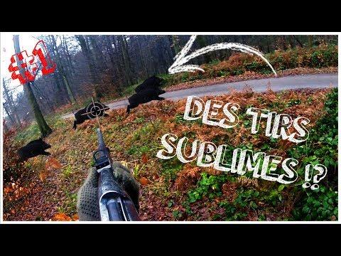 Les plus beaux tirs de sangliers en France!!!   Chasse aux Sangliers   Compilation #1
