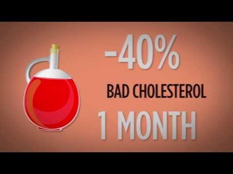 Palm Oil - Health & Nutrition