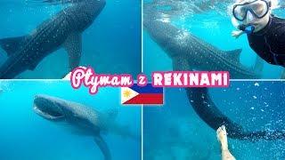 Filipiny: Pływam z największymi rekinami na świecie!  Agnieszka Grzelak Vlog