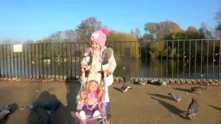 Новая кукла беби бон сестричка Кормим птиц и лошадей.Беби бон Настя и Эльвира