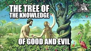 Mystery School: The Tree of the Knowledge of Good & Evil