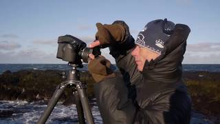 Joe Cornish and the IQ2 Iceland Challenge | Phase One