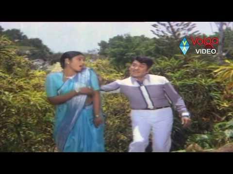 Gopala Krishnudu Songs – Gnapakam Unnadha – Akkineni Nageshwara Rao, Jayasudha – HQ