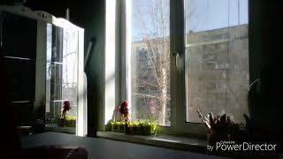 "Трейлер к сериалу ""крик души"""