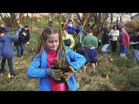 Bringing conservation education into schools