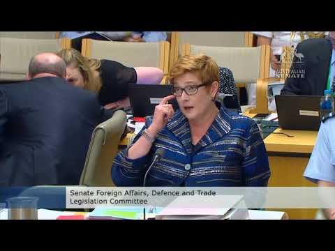 Senator Whish-Wilson grills the government on their plans to boost weapons exports