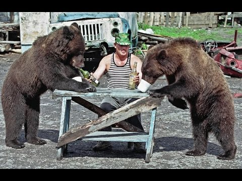 Meanwhile In Russia MARCH 2016 - Russian Fail / Win ...