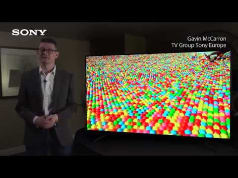 Sony TV   ZF9 First Look   2019