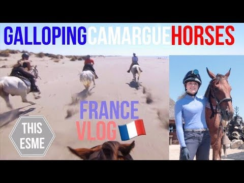 Horse Riding in the Camargue, Provence, France Travel Vlog | This Esme
