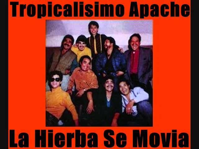 tropicalisimo apache la hierba se movia