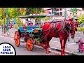 Lagu Anak Naik Delman Istimewa Naik Kuda Odong Odong Lagu Anak Populer - Kids Ride Horse Carriage