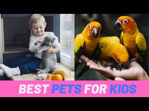 8 pets that are good for your kids | Health and Nutrition