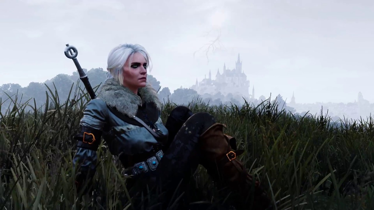 The Witcher 3 Ciri In Toussaint 2560 1440p 2k In Game Live