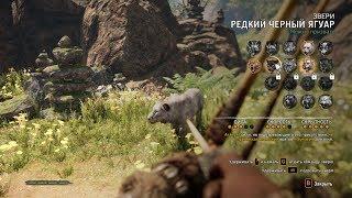 Прохождение Far Cry Primal #9 Приручаем зверей