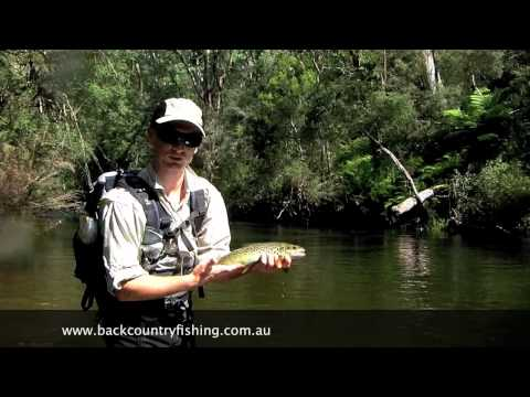 Victorian High Country River Lure Fishing For Trout, Victoria Australia