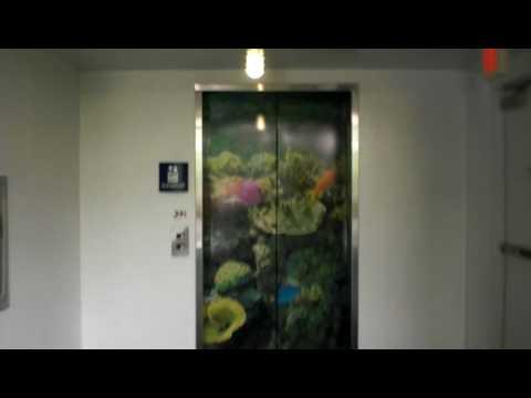 Schindler Hydraulic elevator at PPG Aquarium Pittsburgh, Zoo, Pittsburgh, Pa (retake)