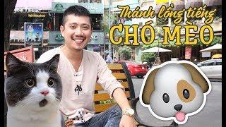THÁNH LỒNG TIẾNG chó mèo Từ Khang là ai mà HOT thế?
