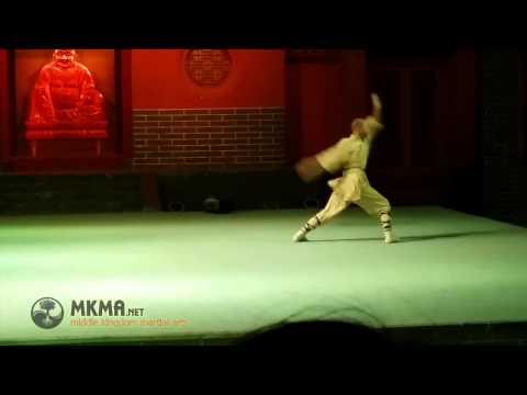 Shaolin Kung Fu Animal Styles  Snake Kung Fu  She Quan