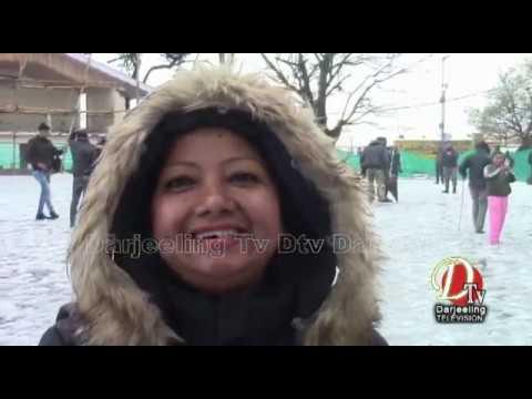 Darjeeling News Dtv 16 Feb  2019  Top Stories