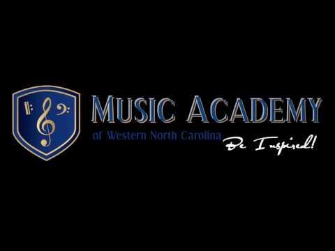 Guitar, Bass, & Drum Lessons at the Music Academy of WNC in Hendersonville