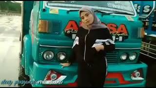 Download Story wa truk angsa putih