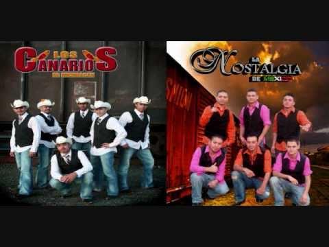 los canarios de michoacan la ultima serenata