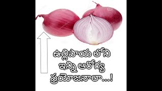 Health Benefits of Onion in Telugu and Onion Cures all Sexual Disorders and Hair Problems in Men