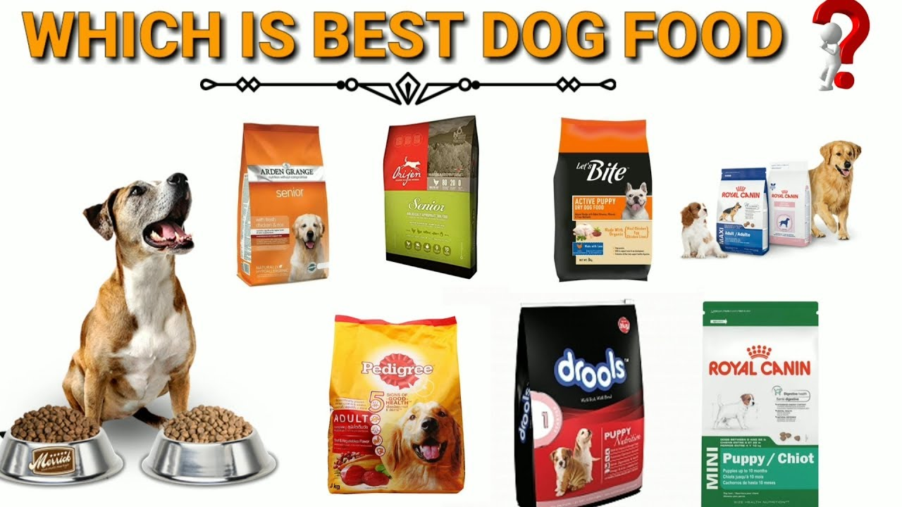 Best Dog Food Brand In India In Hindi Best Dog Food Brand For Your Puppy Best Dog Food