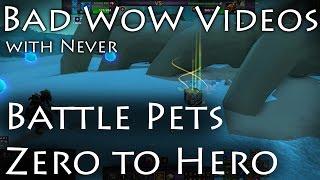Battle Pets - Zero To Hero In Mere Hours
