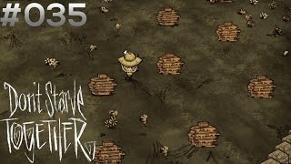 DON'T STARVE TOGETHER #035: Lecker, Honig! [HD+] | Let's Play Don't Starve