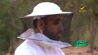زيارة لمزارع النحل في قرية بني عمرو بالطائف