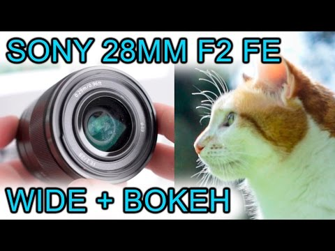 Sony 28mm f2 FE lens review - Lovely autofocus lens for A7S / A7R / A7 Mark II