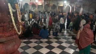 श्री राधा रानी मंदिर दर्शन