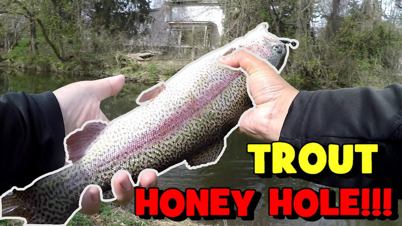 Download I DEFINITELY FOUND the Trout HONEY HOLE in NJ...!!!