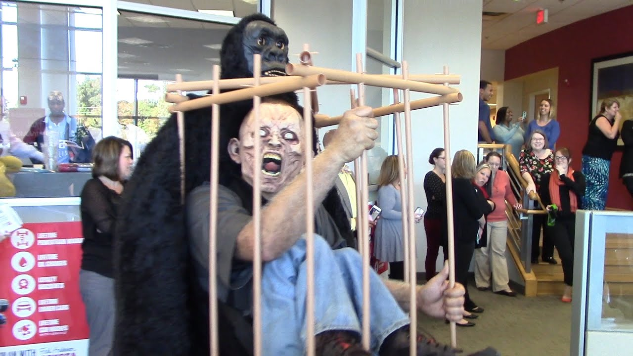 halloween costume contest fred anderson toyota 2015 youtube