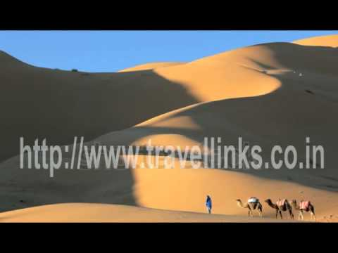 Travel Agents Nagpur