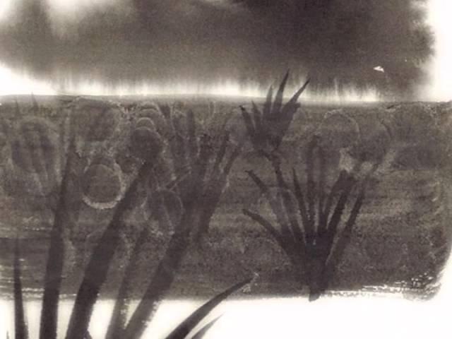 Foggy Autumn Lake, video haiga by Brett Brady